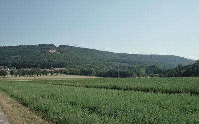 HyStarter I: Wasserstoffregion Schaumburg